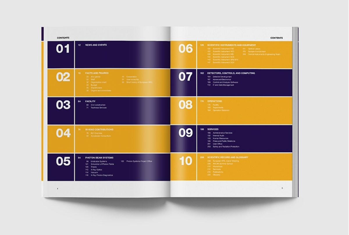 Blumdesign Projekte Xfel Img10A